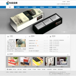 包装装潢公司网站案例【TYWl100】