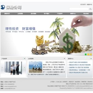 保险公司网站案例【TYWl094】