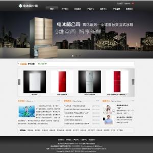 电冰箱公司网站案例【TYWl082】