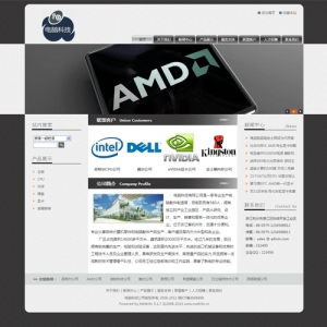 电脑科技网站案例【TYWl083】