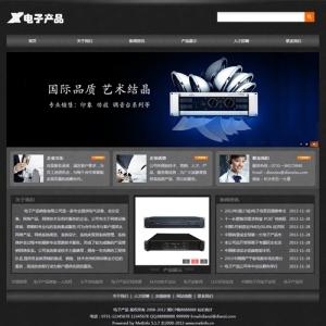 电子产品销售公司网站案例【TYWl099】