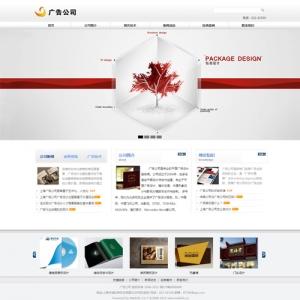 广告公司网站案例【TYWl088】