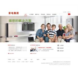 家电集团公司网站【TYWl103】