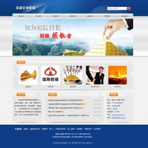 金融企业网站案例【TYWl097】
