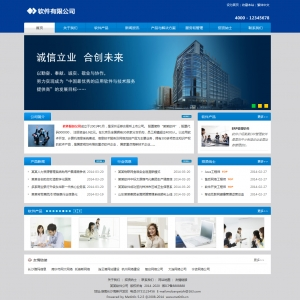 热门常规风格企业网站案例[TYv5]