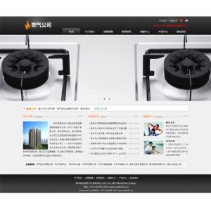 燃气公司网站案例【TYWl082】