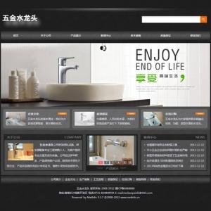 五金水龙头公司网站案例【TYWl099】