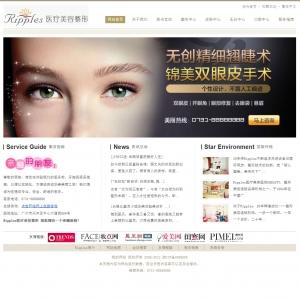 医疗美容网站案例【TYWl104】