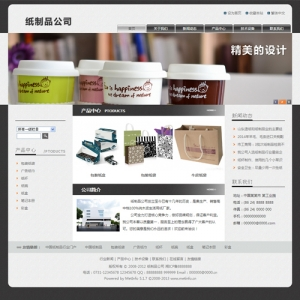 纸制品公司网站案例【TYWl083】