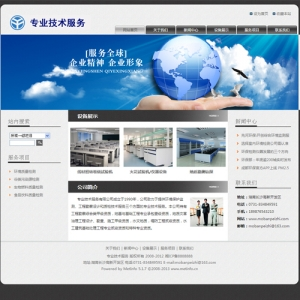 专业技术服务公司网站案例【TYWl083】